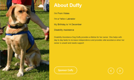 Support Dogs - I'm Duffy