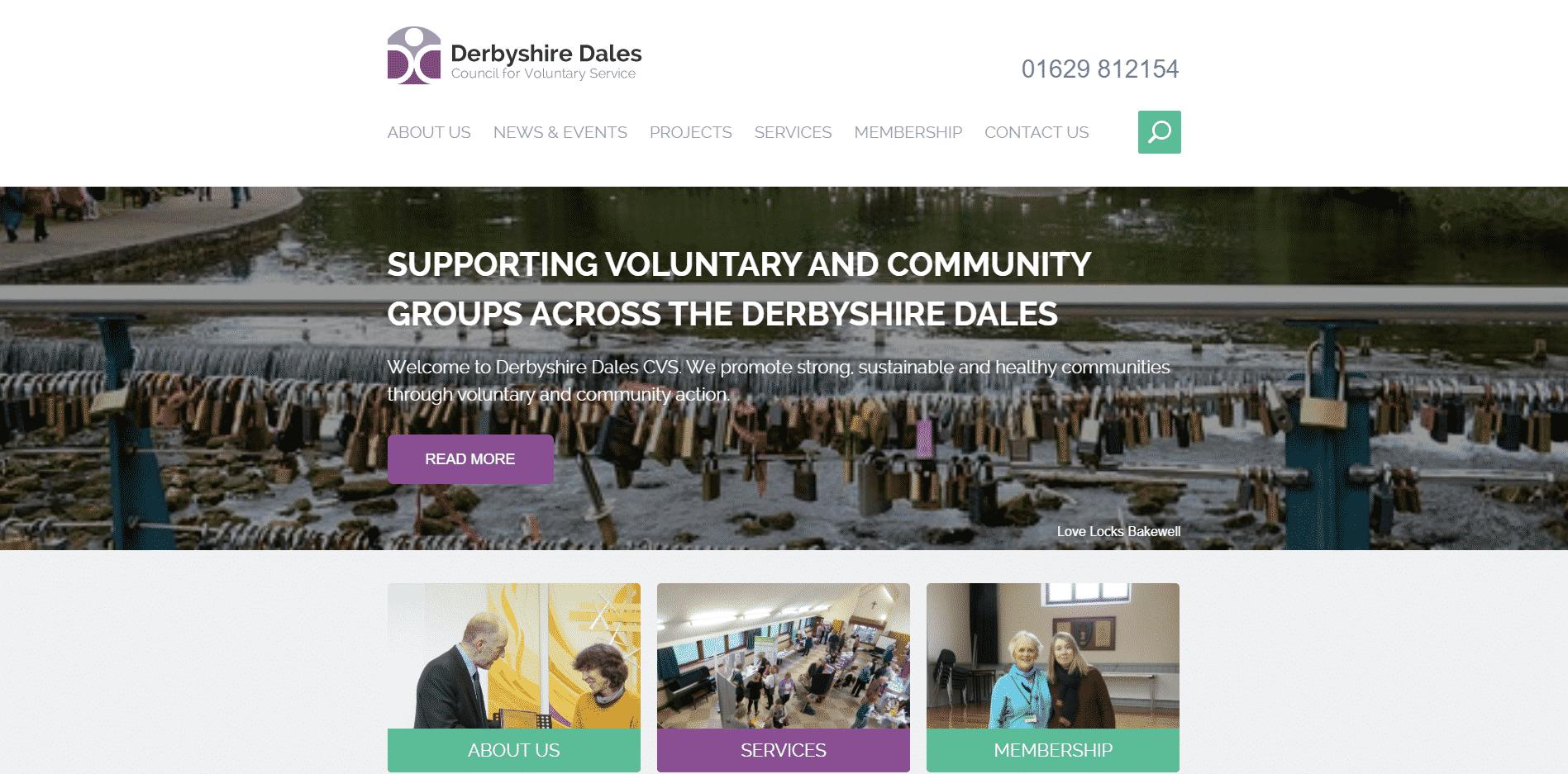 DDCVS branding ESP Projects